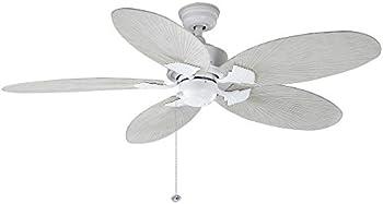 Hampton Bay Lillycrest 52 in. Indoor/Outdoor Ceiling Fan