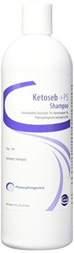 Ketoseb Shampoo +PS, 16 oz
