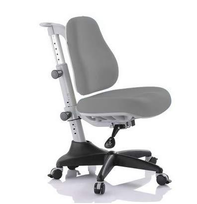 Ergodesk COMF-PRO Match Stuhl Bürostuhl Schreibtischstuhl Höhenverstellbarer Ergonomisches Design (grau)