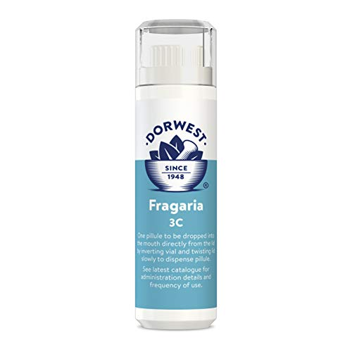 DORWEST HERBS Fragaria for Dogs and Cats