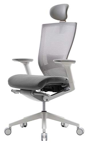 SIDIZ T50 Adjustable Ergonomic Office Desk Chair : Advanced Mechanism for...