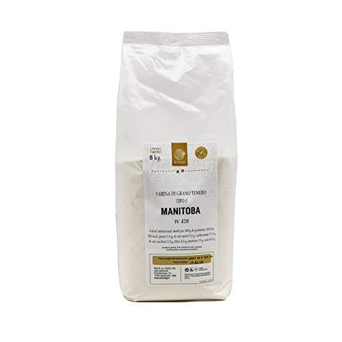 Farina di frumento tenero Manitoba W400 Kg.5 Molini Riggi