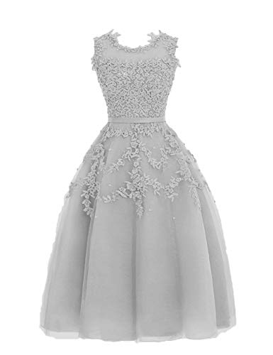 HUINI Ballkleider Tüll Kurz Abendkleid Hochzeitskleid A-Linie Brautjungfernkleid Spitzen Sommer Abiball Partykleid Silber 58