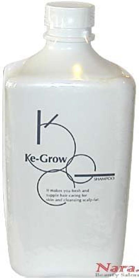 コーヒーステレオ志すKe-Grow(ケイグロウ) 頭皮シャンプー 1000ml