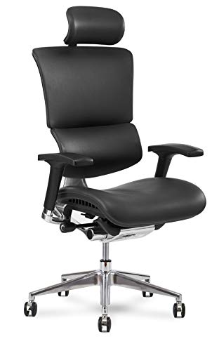 X Chair Office Desk Chair (X4 Black Brisa with Headrest) Ergonomic Lumbar Support Task Chair Breathable Mesh, Adjustable Arms, Executive, Drafting, Gaming Computer Home or Office Chair