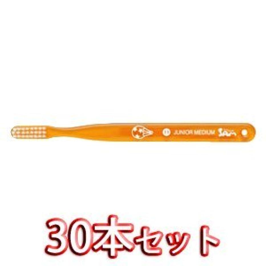 おとなしいインペリアル水っぽいサムフレンドベーシック 歯ブラシ 30本入 11