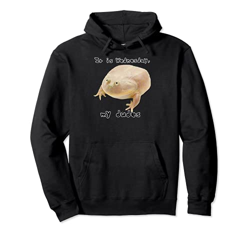It is Wednesday My Dudes Funny Classic Frog Meme Original Sudadera con Capucha