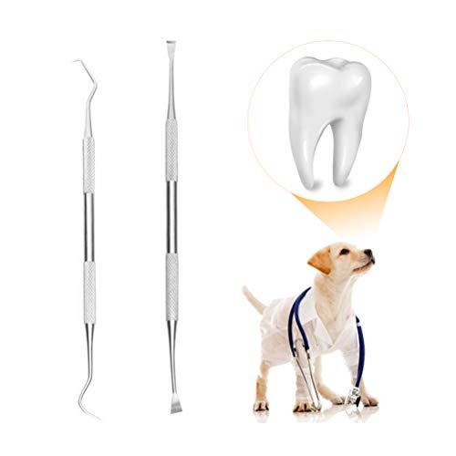 tandskrapa hund apoteket
