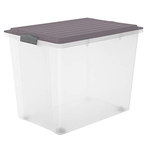Rotho Compact - Caja de Almacenamiento 70 L con Tapa y Ruedas, Plástico (PP) sin BPA, Morado (Malva)/Transparente, 70 L (57.0 x 39.5 x 43.5 cm)