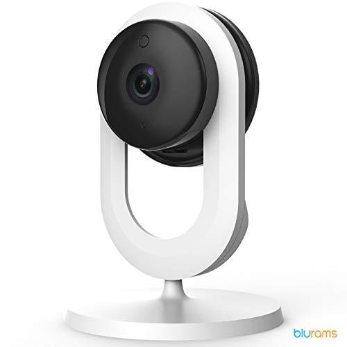 Blurams Home Lite 720p Telecamera Dome di sorveglianza per casa Dom Camera-WiFi Microfono-Altoparlante Intelligent Motion Detection/Suoni Notifiche Mobile Tempo Reale Visione Notturna (iOS Android)