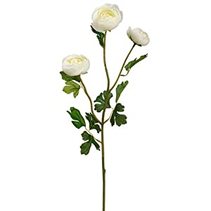SilksAreForever 25.5″ Silk Ranunculus Flower Stem -White (Pack of 12)