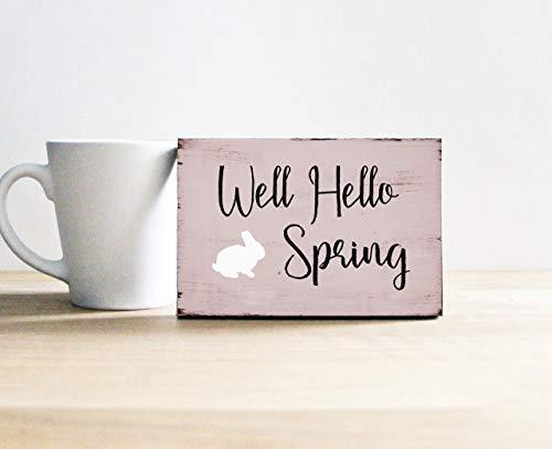 Brooer2ick Letrero Decorativo de Madera con Texto en inglés «Well Hello Spring» para estantería, tamaño pequeño