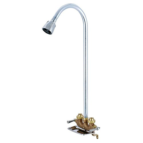 Central Brass 0477 2-Handle Utility Shower
