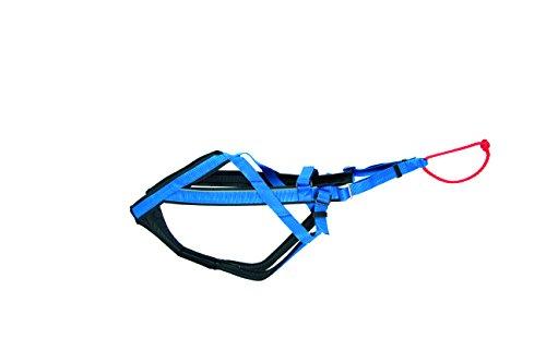 Neewa 8033087538373–Racing Harness Blau XL