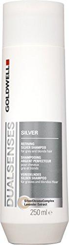 Goldwell Dualsenses Shampoo, Silber 250 ml