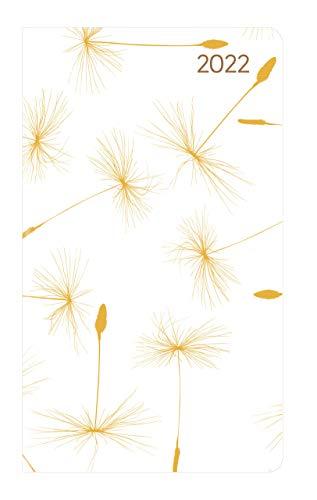 Slimtimer Style Pusteblume 2022 - Taschen-Kalender 9x15,6 cm - Weekly - 128 Seiten - Notiz-Buch - mit Info- und Adressteil - Alpha Edition