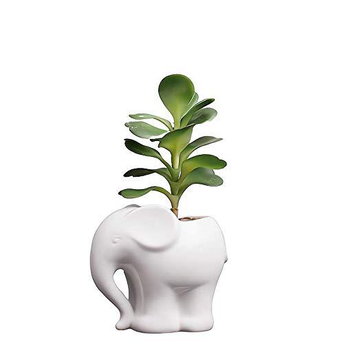 Cute Cartoon Animal Elephant Shaped Ceramic Succulent Cactus Vase Flower Plant Pot for Home Garden Office Desktop Decoration (Plant Not Included)