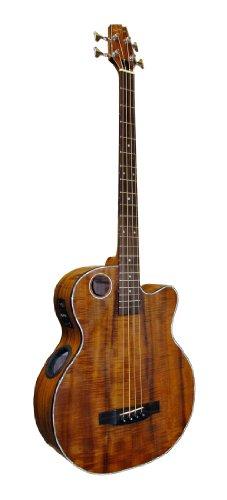 Boulder Creek EBR6-4N Vollkörper Bass Gitarre mit Suspended Bracing System