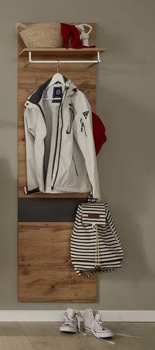 trendteam Garderobe Gardrobenpaneel Wandpaneel Coast, 50 x 179 x 25 cm in Wotan Eiche Dekor, Absetzung Grau  mit 1 Kleiderbügel, einer Kleiderstange und 4 Kleiderhaken