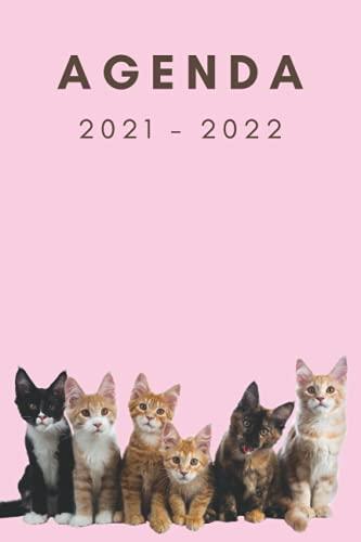 Agenda scolaire 2021-2022: Parfait agenda pour les filles, calendrier, objectifs, pensées contacts, primaire, élémentaire, collège, Thème Chats cute fond rose