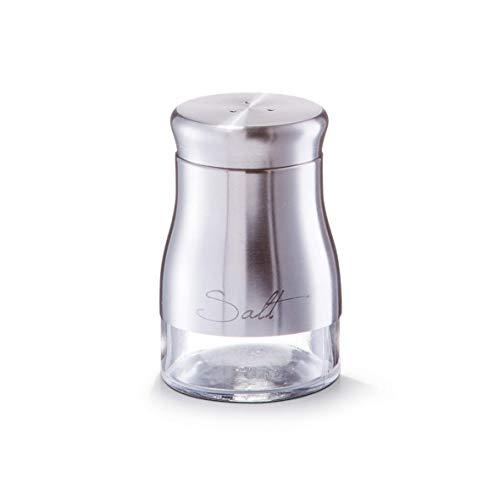 Zeller Salzstreuer Salt, Edelstahl, Glas, Universel, one size