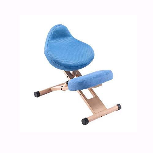 YUTRD ZCJUX Sedia ergonomica Moda Semplice Versione aggiornata Moderno ed ergonomico Legno Solido Senza braccioli Postura Seduta Sedia di correzione (Color : A)