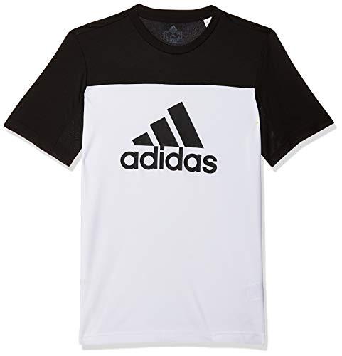 adidas YB Equipment T Camiseta, Niños, Blanco (White/Black), 11-12 años