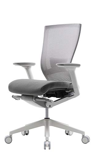 SIDIZ T50 Adjustable Ergonomic Office Desk Chair : Advanced...