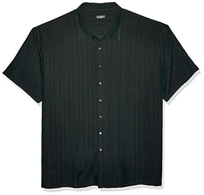 Van Heusen Men's Big and Tall Air Short Sleeve Button Down Poly Rayon Stripe Shirt, Green Zucchini, 2X-Large