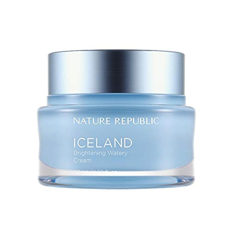 ピュー矢計り知れないネイチャーリパブリック(Nature Republic)アイスブライトニング水分クリーム 50ml / Iceland Brightening Watery Cream 50ml :: 韓国コスメ [並行輸入品]