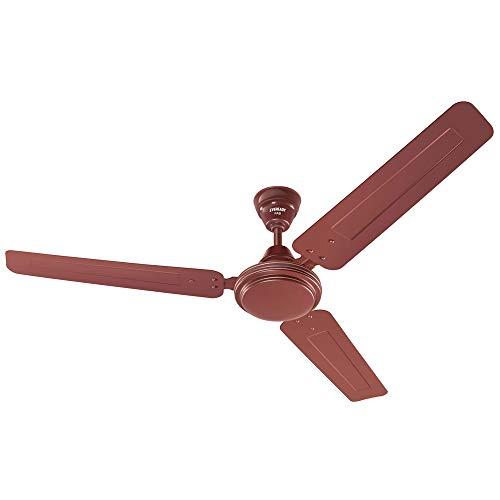 Eveready FAB 1200 mm Ceiling Fan, Brown