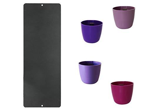 KalaMitica Set Magnettafel Anthrazit mit 4 magnetischen Töpfen Mini Kugel Ø 6cm; KalaMitica21