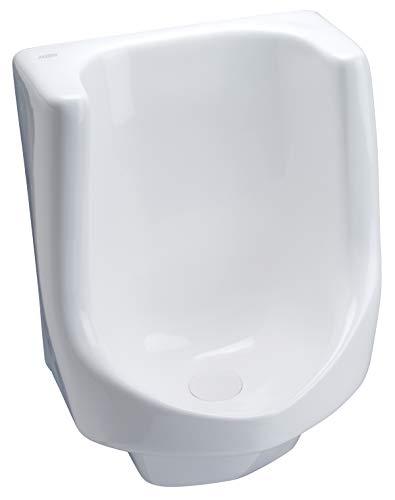 Zurn Z5795 Large Waterless Urinal