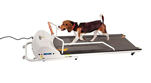 GOPET PetRun PR720F Dog Treadmill Indoor...