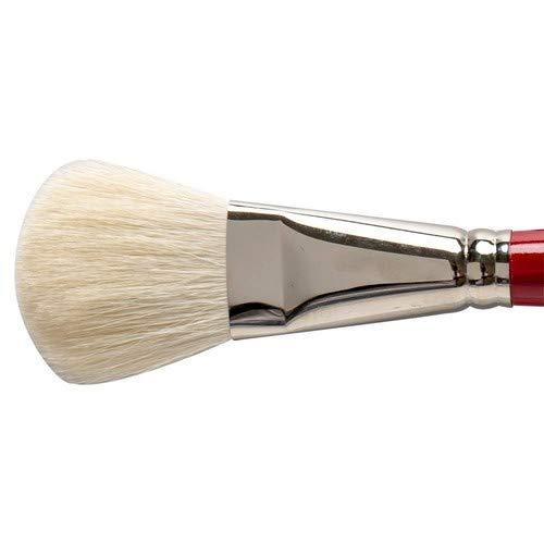 Silver Brush Argent Brosse Série 5519s Argent Balai Brosse à Manche Court Ovale, Poils de chèvre, Crimson/Blanc, Taille 2,5 cm/25 mm