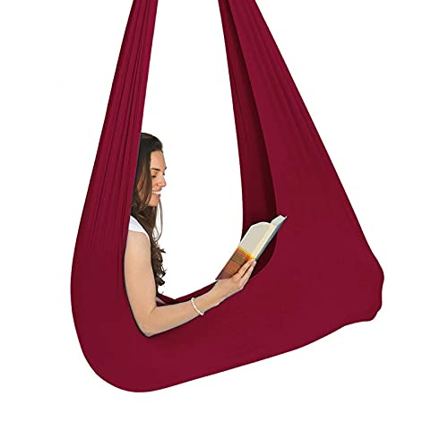 SFSGH Classic Indoor Outdoor Sensory Swing Soft Therapy Swing for Adults and Children Cocoon Chair Great for Children with Special Needs, Autism, ADHD