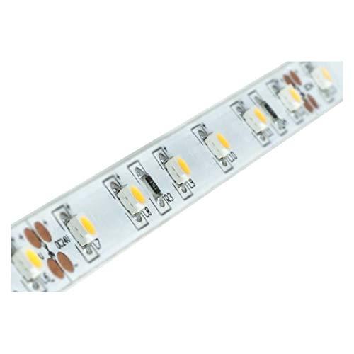 Brumberg Leuchten LED-Flexband 5000mm 15201003 24V 3100K IP00 Lichtschlauch/-Band 4250047798156