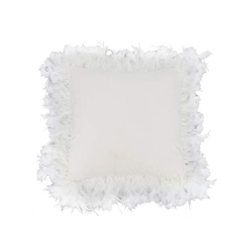 Oreillers de sofa, Oreillers de coton de couleur unie d'étudiant lavable facile à porter le magasin d'habillement de Coussins de cinéma dessert l'Oreillers de magasin