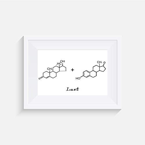 Molekül Testosteron + Östrogen (Lust) Inspirier - Drucken - Poster - Graustufen - Wandkunst- verschiedene Größen(Rahmen Nicht Inbegriffen)