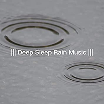 Deep Sleep Rain Music