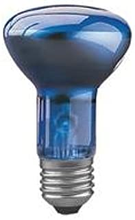 10 x Paulmann Glühbirne Reflektor R63 40W E27 Blau 63mm Glühlampe dimmbar blue