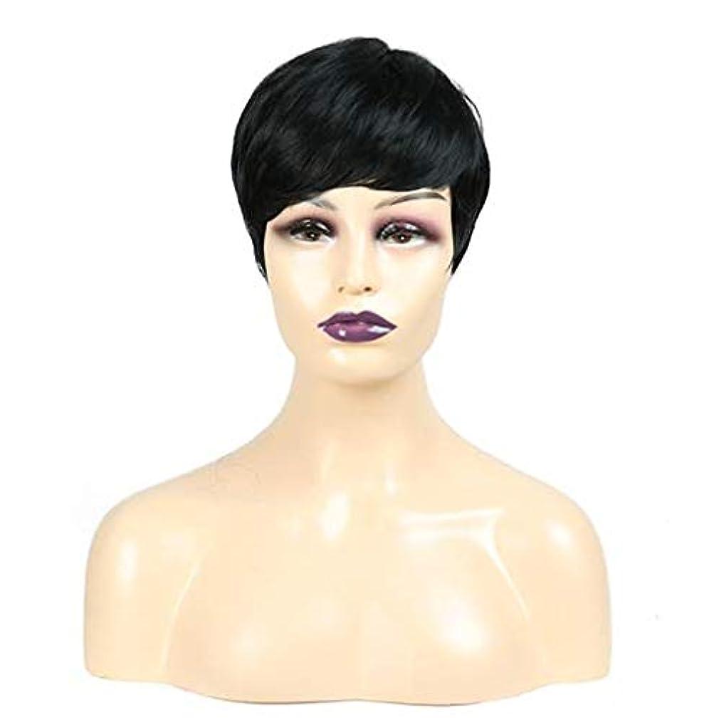 記者有用速報女性の毎日使用のパーティーヘアのためのウィッグナチュラルストレート柔らかい髪の合成レースのフロント