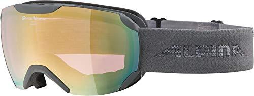 ALPINA PHEOS S Skibrille, Unisex– Erwachsene, grey, one size