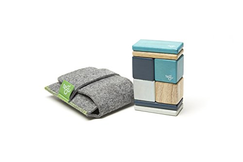 Tegu 8 Piece Pocket Pouch Magnetic...