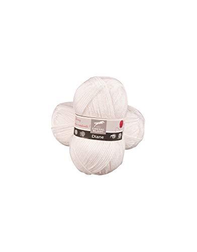 Laines Cheval Blanc - DIANE pelote de laine 50g - 100% acrylique - Laine pour tricot et crochet - Laine douce et chaude, idéale tricot adulte et layette