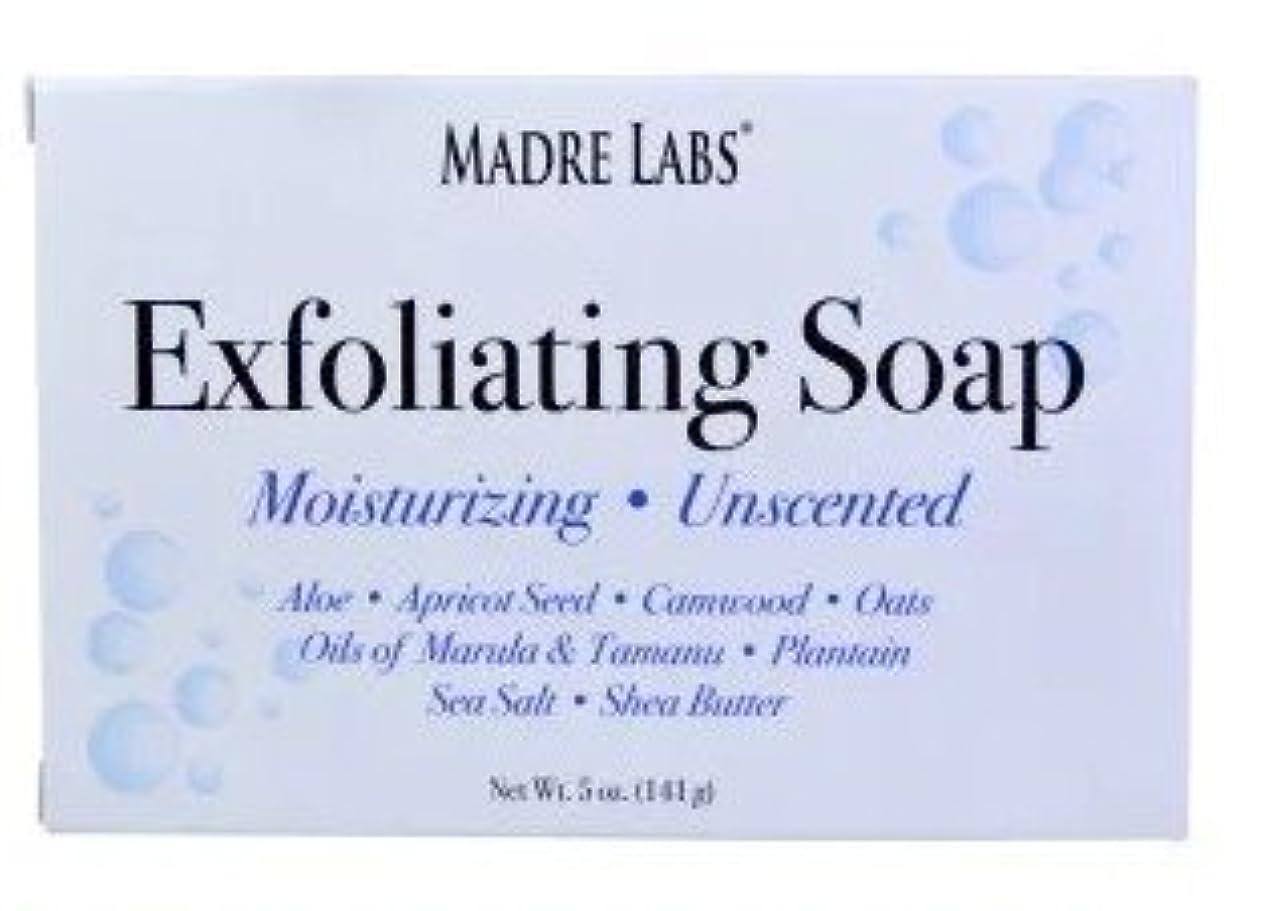 石昆虫を見る先見の明マドレラブ シアバター入り石鹸 Madre Labs Exfoliating Soap Bar with Marula & Tamanu Oils plus Shea Butter [並行輸入品]