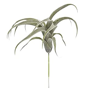 Decorations 33cm Artificial Plants Bromeliad Simulation Flower Air Grass Home Decoration Wedding Holding Flower Wall Plant Fake Flower – (Color: Green)