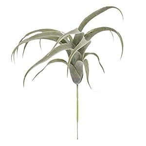 Silk Flower Arrangements Decorations 33cm Artificial Plants Bromeliad Simulation Flower Air Grass Home Decoration Wedding Holding Flower Wall Plant Fake Flower - (Color: Green)