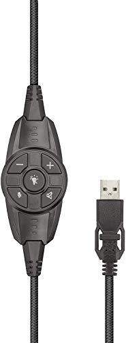 Trust GXT 450 Blizz 7.1 USB Gaming Headset (7.1 Virtual Surround Sound, für PC und Laptop, LED-Beleuchtung)