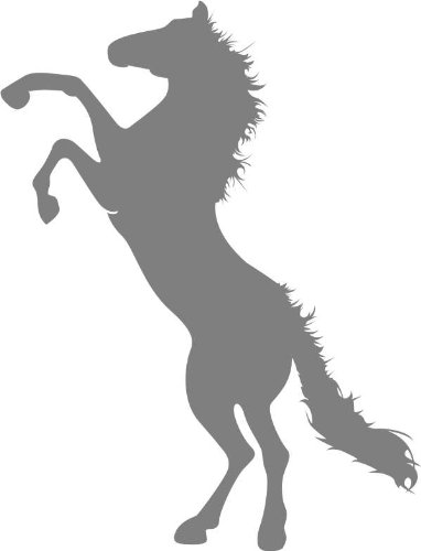INDIGOS UG Wandtattoo W672Springendes–Wandtattoo, Motiv: Pferd Hengst 80 x 44 cm Glasdekor